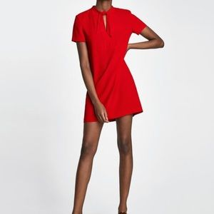 Zara | Mini-Dress w/Bow